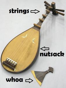 nutsack guitar